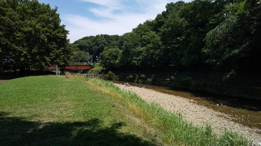 清瀬金山緑地公園4